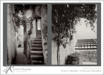 italy shade • italian grapes