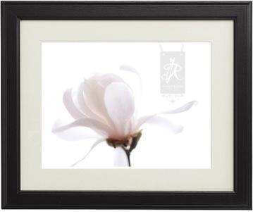 yruzicka_magnolia